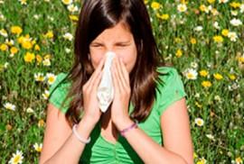 Аллергическая реакция организма на пыльцу различных растений