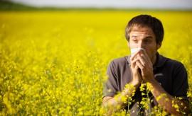 Грозит ли вашему здоровью аллергия?