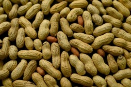 Как вылечили десятилетнего ребенка от аллергии на арахис?