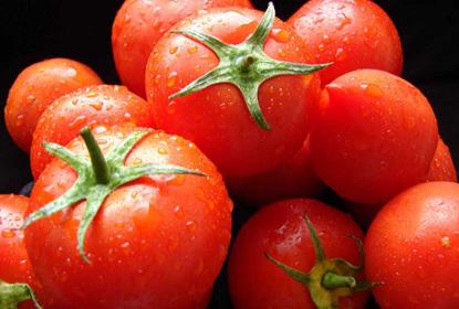 Аллергическая реакция организма на томаты