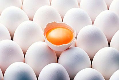 Причины аллергической реакции на яйца