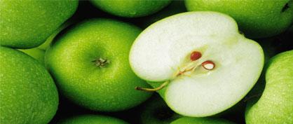 Аллергия на яблоки у взрослых