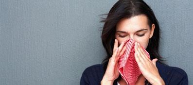 аллергия на бытовую пыль что делать