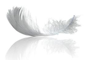 Аллергия на пух и перо