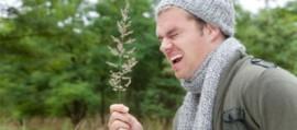 Отличительные особенности аллергии от распространенных видов болезни