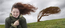 Аллергия на ветер