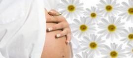 Аллергия при беременности – симптомы, лечение, последствия