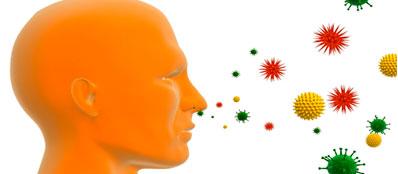 домашние аллергены