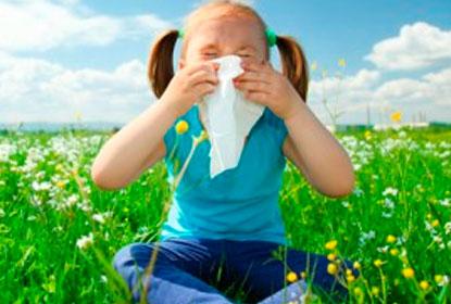летом аллергия на траву что делать