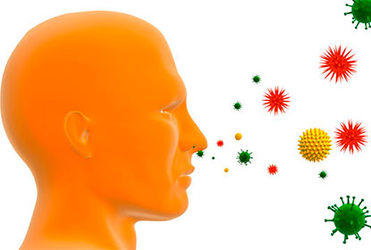 почему аллергия на пыль