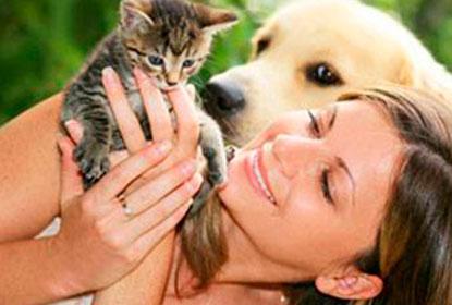 аллергия на пух перо симптомы