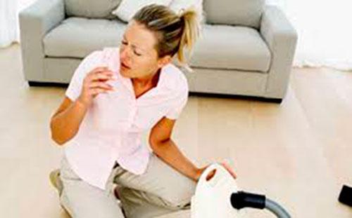 Группы домашних аллергенов