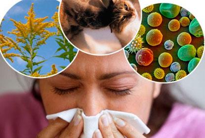 Категории природных аллергенов