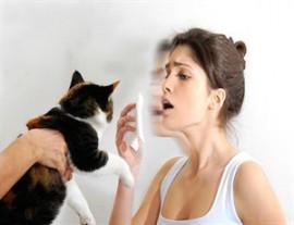 Как проявляется аллергия на мех, эффективные методы лечения заболевания