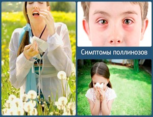 simptomy-pollinozov-740x493_300x230