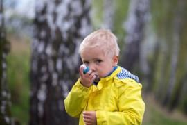 Аллергия на цветение березы у детей